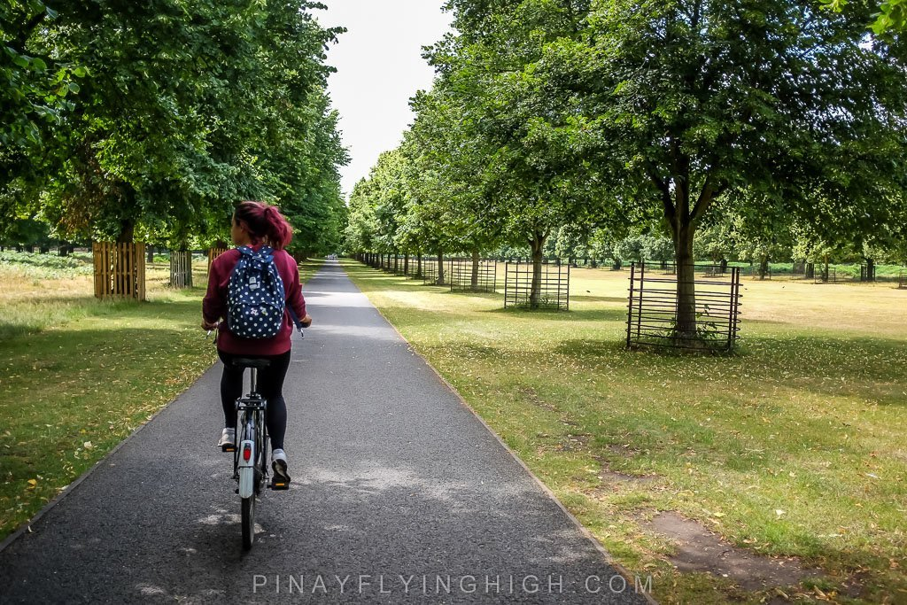 Hampton Court Bike Ride Tour by Coddiwomple Tours - PINAYFLYINGHIGH.COM-109
