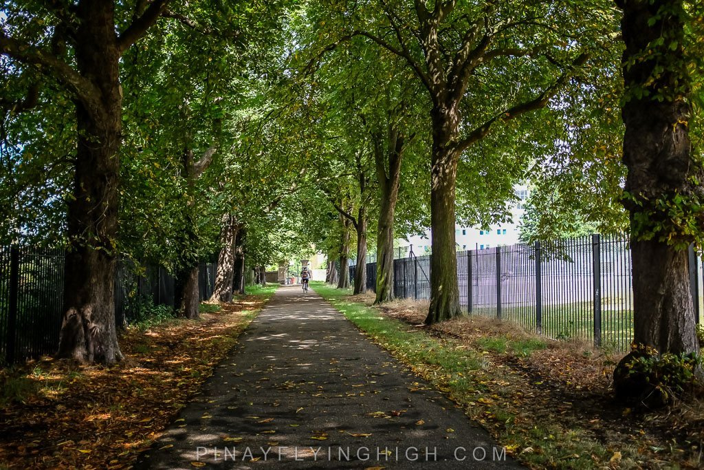 Hampton Court Bike Ride Tour by Coddiwomple Tours - PINAYFLYINGHIGH.COM-112