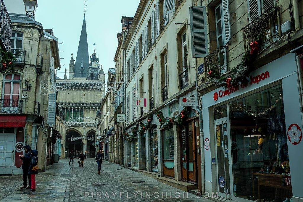 Dijon, France - PINAYFLYINGHIGH.COM-125