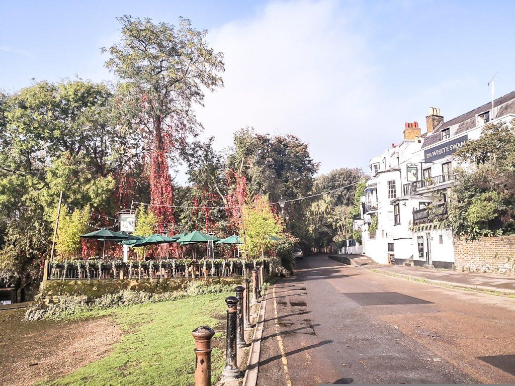 White Swan Pub, Twickenham, London