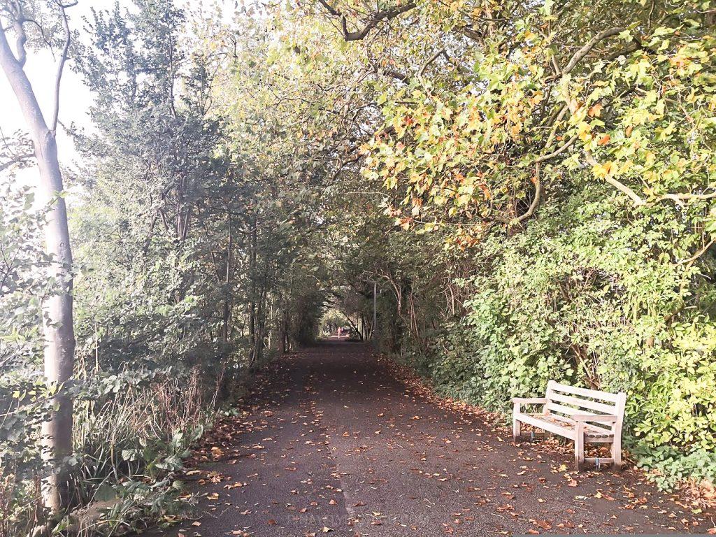 Thames Path, Twickenham, London