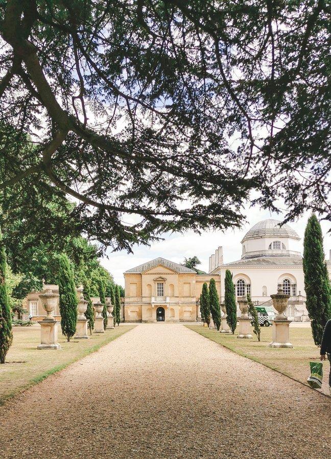 Cedar Trees at Chiswick Gardens