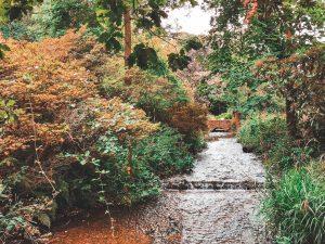 Woodland Gardens, Bushy Park, London, England