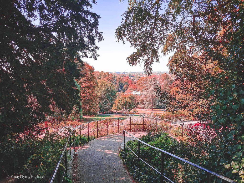 Terrace Gardens, Richmond, London, England-104
