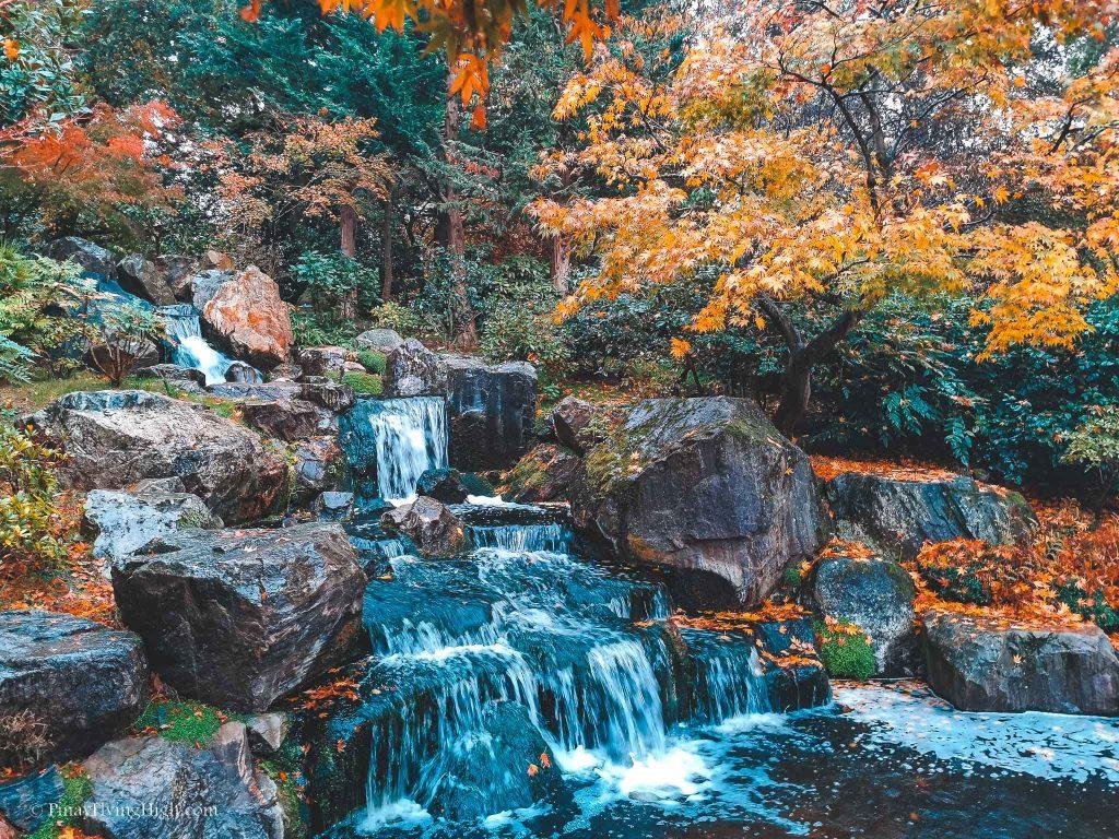 Autumn in Kyoto Gardens, Holland Park, Kensington, London-100