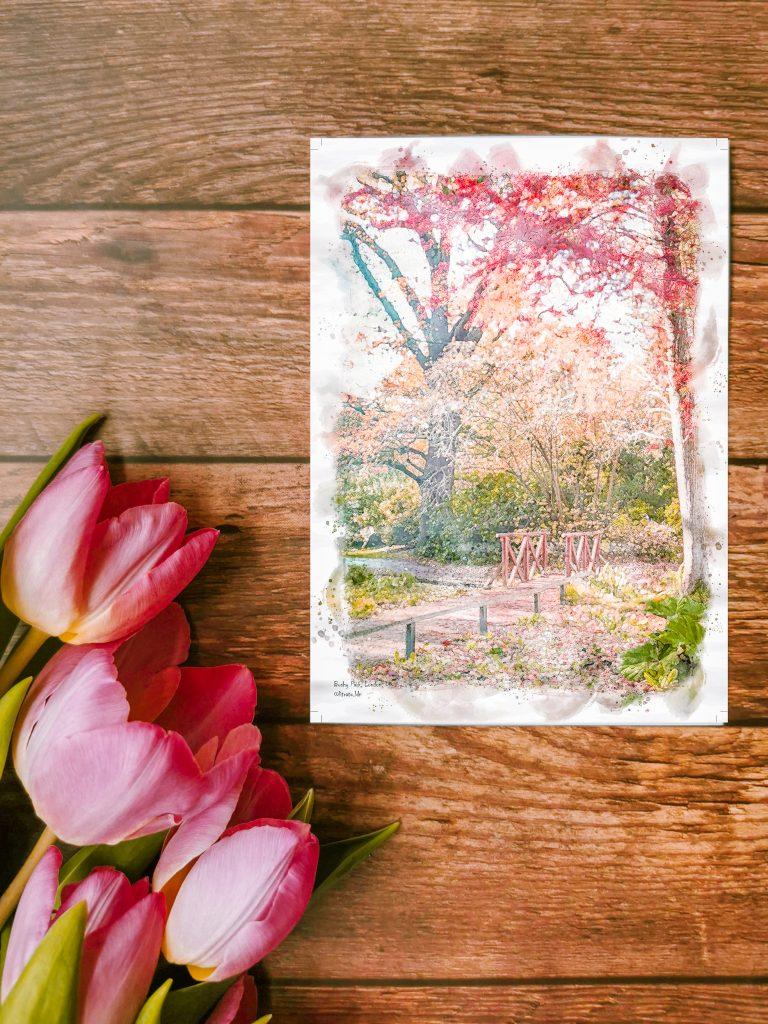 Bushy Park Postcard